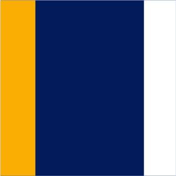 Navy-Gold-White
